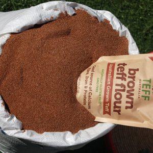 Brown Teff – ጥቁር ጤፍ. 100kg